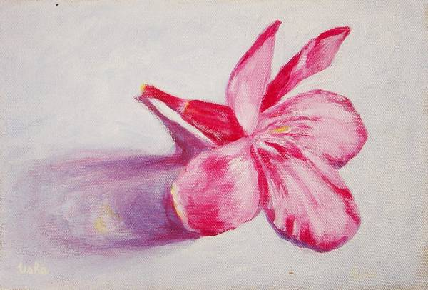 Genneri Art Print featuring the painting Portrait Of The Kaneri Flower. Oleander by Usha Shantharam