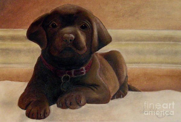Puppy Art Print featuring the drawing Puppy Love by Susan Clausen