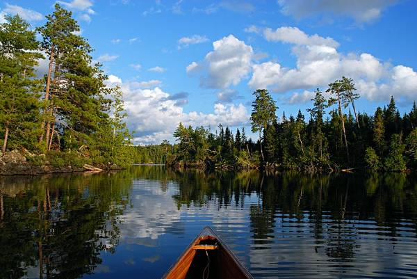Quiet paddle art print by larry ricker for Minnesota lake cabin for sale