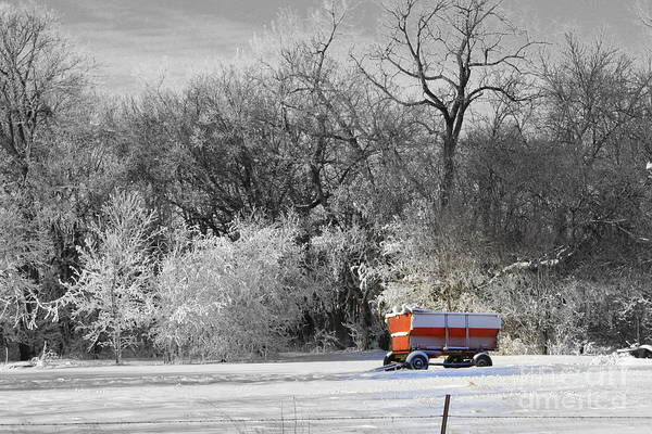 Snow Art Print featuring the photograph Radio Flyer by Julie Lueders