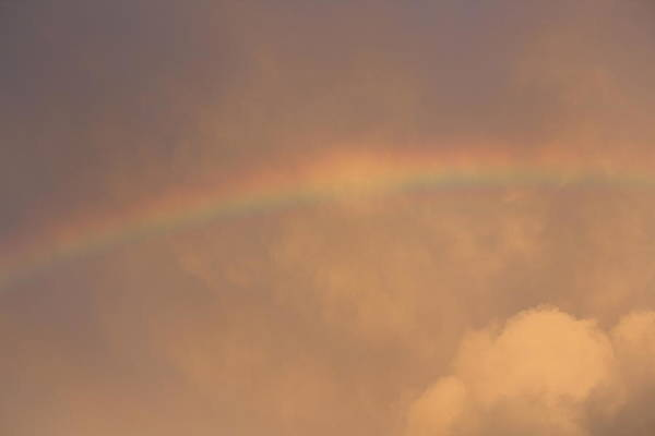 Rainbow Art Print featuring the photograph Rainbow In Clouds by Donna Walsh