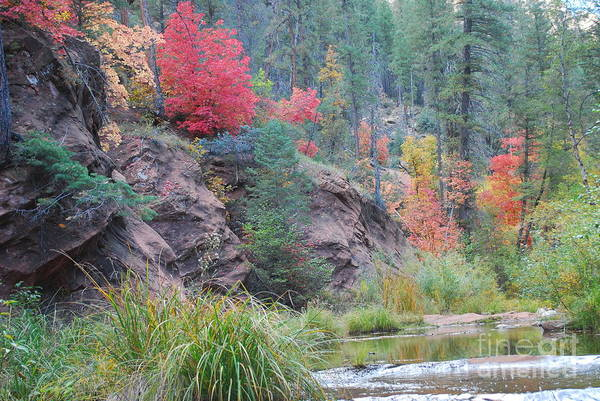 Sedona Art Print featuring the photograph Rainbow Of The Season With River by Heather Kirk