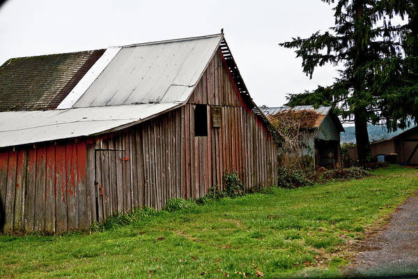 Old Art Print featuring the photograph Red Barn by Liz Santie