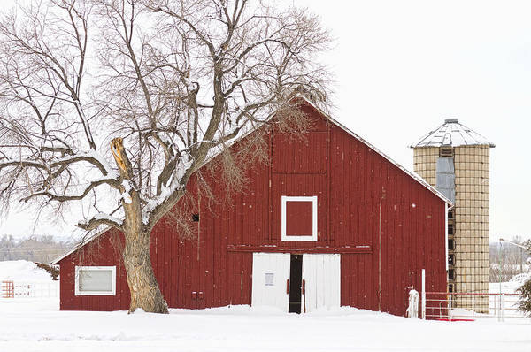 Fresh Art Print featuring the photograph Red Barn Winter Country Landscape by James BO Insogna