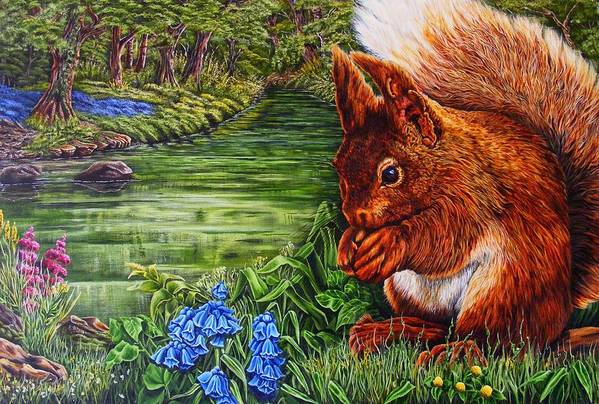 Red Sqiuril Art Print featuring the painting Red Coate by Donald Dean