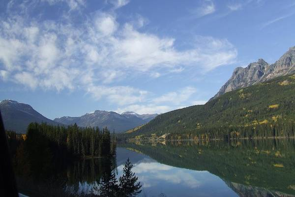 Reflection Art Print featuring the photograph Lake Reflection by Tiffany Vest