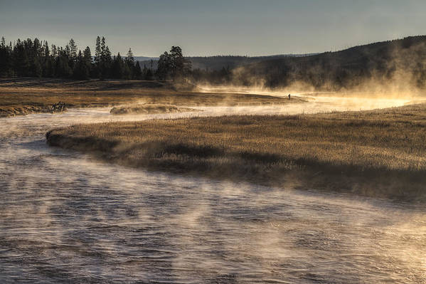 Yellowstone National Park Art Print featuring the photograph Repose Of Nature by Mark Kiver