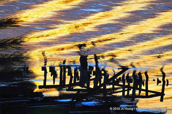 Ripple Art Print featuring the photograph Ripple Effects Of The Day by JCYoung MacroXscape