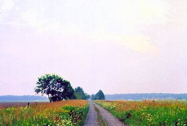 Landscape Art Print featuring the photograph Road Through The Fields 3 Ae by Lyle Crump