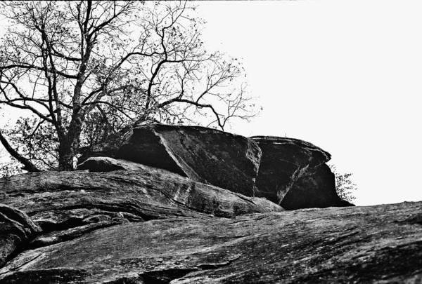 Landscape Art Print featuring the photograph Rock Wave by Steve Karol