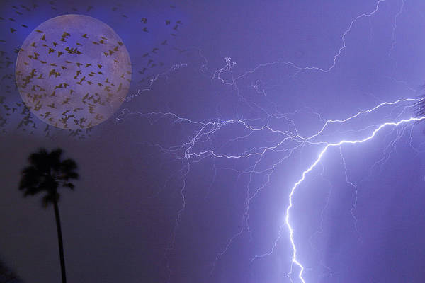 Lightning Art Print featuring the photograph Running From The Storm by James BO Insogna