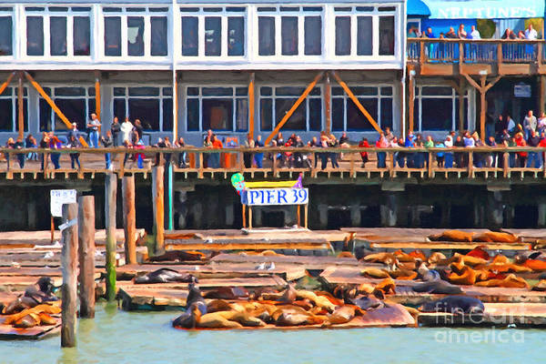 San Francisco Art Print featuring the photograph San Francisco Pier 39 Sea Lions . 7d14272 by Wingsdomain Art and Photography