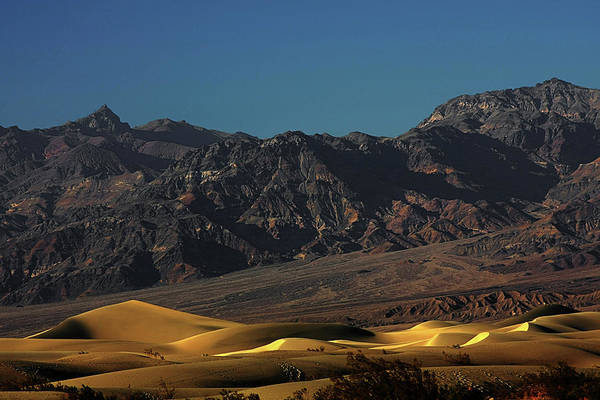 Eath Valley National Park Print featuring the photograph Sand Dunes - Death Valley's Gold by Christine Till