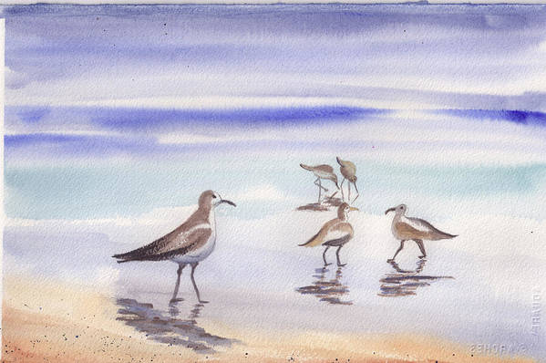 Beach Art Print featuring the painting Sanibel Beach And Birds by Ruth Bevan