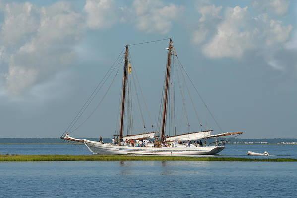 Sailing Ship Art Print featuring the photograph Schooner A. J. Meerwald 5 by Joyce StJames