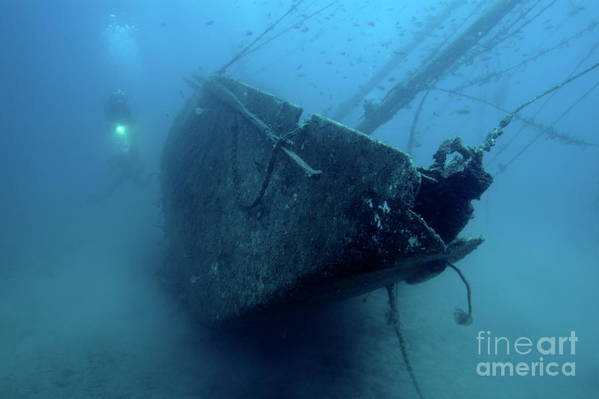 Abandoned Art Print featuring the photograph Scuba Diver Exploring Le Voilier Shipwreck by Sami Sarkis