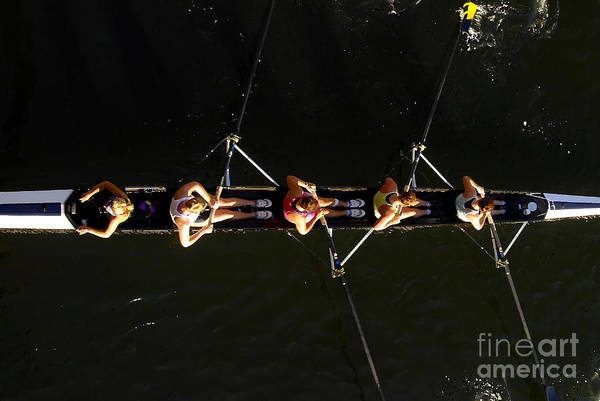 Women Art Print featuring the photograph Sculling by David Lee Thompson