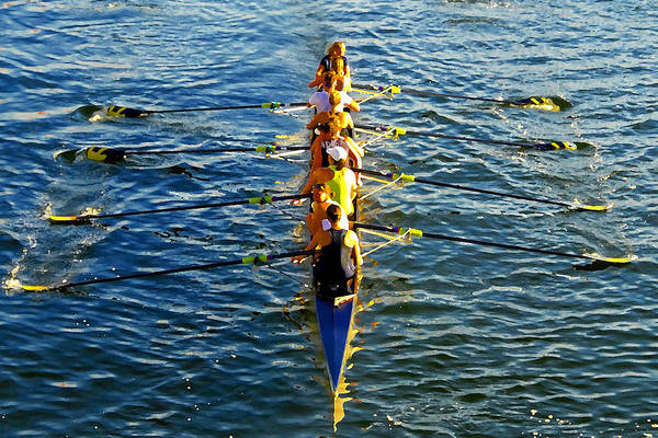 Females Art Print featuring the photograph Sculling Women by David Lee Thompson