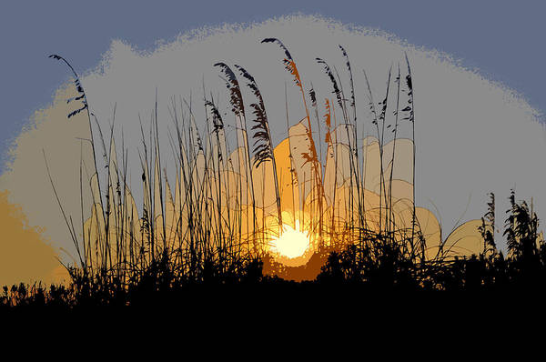 Sea Oats Art Print featuring the painting Sea Oats At Sunset by David Lee Thompson