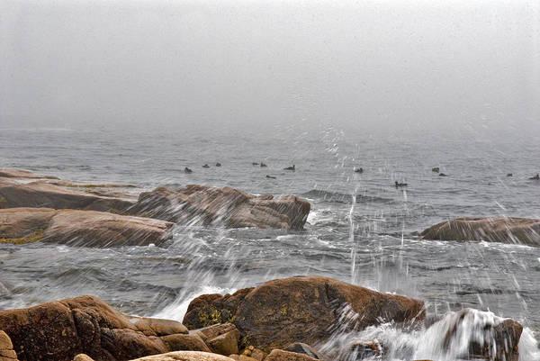 Landscape Art Print featuring the photograph Sea Spray In Fog by Jack Goldberg