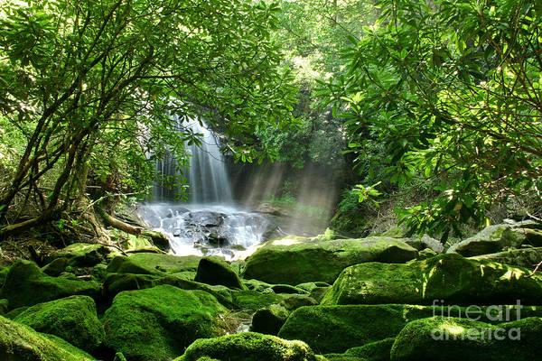 Waterfall Art Print featuring the photograph Secret Paradise - Hidden Appalachian Waterfall by Matt Tilghman