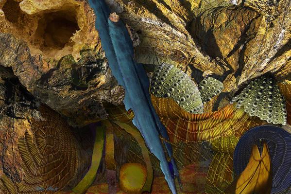 Photopainting Art Print featuring the digital art Segments by Helga Schmitt