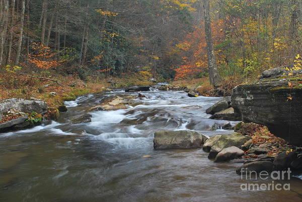 Seneca Creek Art Print featuring the photograph Seneca Creek Autumn by Randy Bodkins