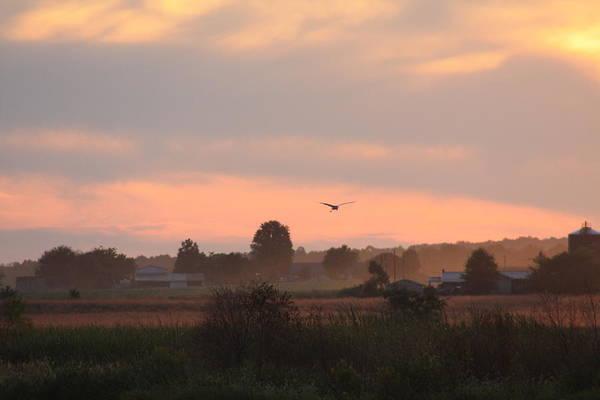 September Art Print featuring the photograph September Sunset by Diane Merkle