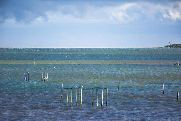 Horizon Art Print featuring the photograph Shades Of Blue On The Horizon by Paula OMalley