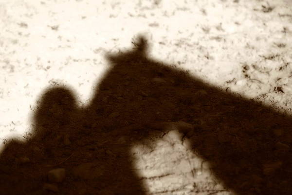 Shadow Art Print featuring the photograph Shadow Of Horse And Girl by Angela Rath