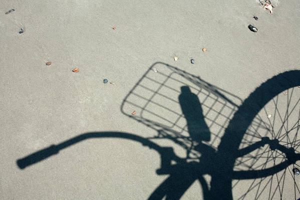 Freedom Art Print featuring the photograph Shadow On The Beach by Diane Macdonald