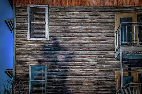 Art Print featuring the photograph Siding by Chroma Photographer