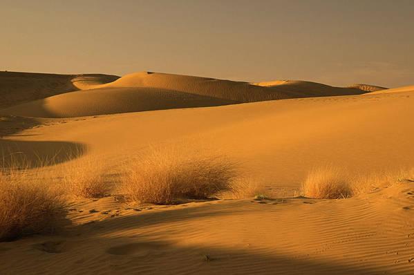 Desert Art Print featuring the photograph Skn 1124 Desert Landscape by Sunil Kapadia