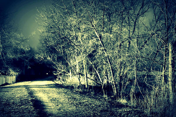 Night Art Print featuring the photograph Sleep Walk by Michael Draper