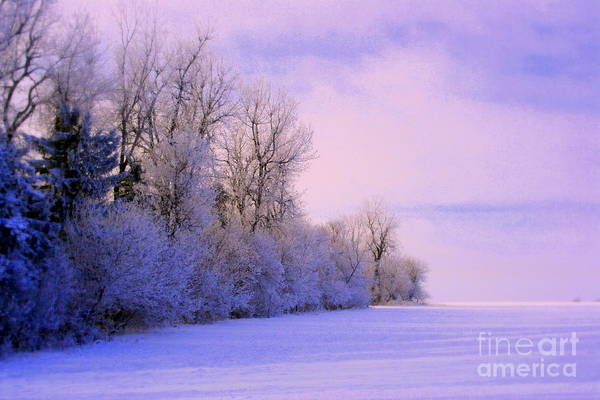 Snowy Day Art Print featuring the photograph Snowy Sunday by Julie Lueders