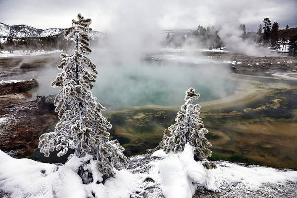 Horizontal Art Print featuring the photograph Snowy Yellowstone by Jason Maehl