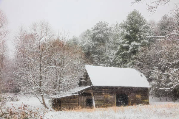 Appalachia Art Print featuring the photograph Soft Colors In The Snow by Debra and Dave Vanderlaan