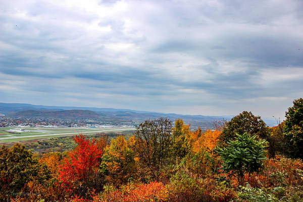 Landscape Art Print featuring the photograph South Williamsport Foliage by Travis Boyd