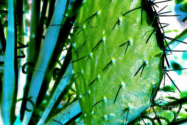 Abstract Art Print featuring the photograph Spike by Carl Ellis
