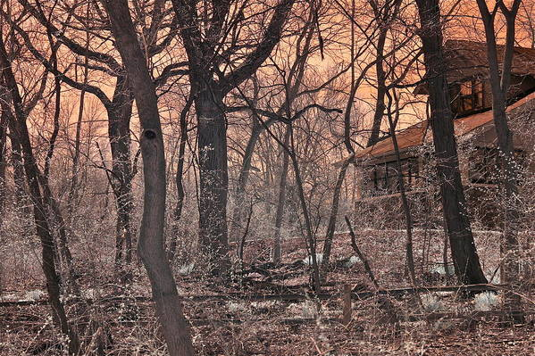 Early Morning Art Print featuring the photograph Spooky Old House by Robert Joseph