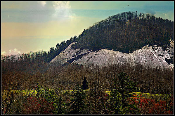 Landscape Art Print featuring the photograph Spring Begins At Glassy Mountain by Kathy Barney