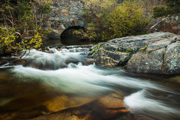 Landscape Art Print featuring the photograph Spring Flow At Eagle Creek by Mike Herron