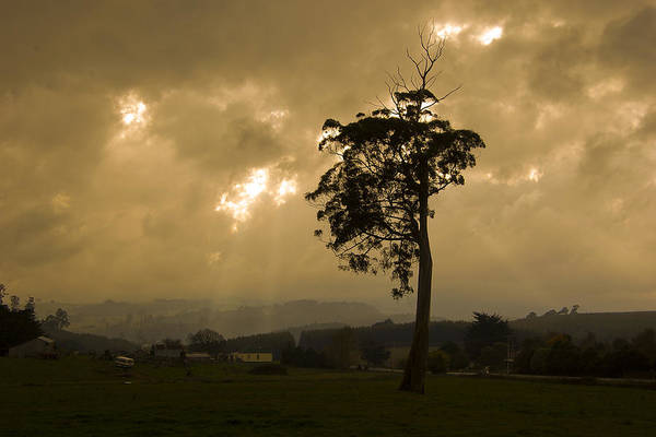 Landscape Storm Rain Trees Light Art Print featuring the photograph Storm Over Wilmot by Sarah King