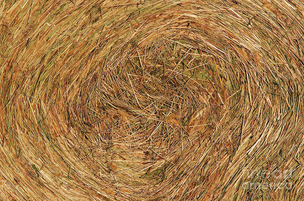 Hay Print featuring the photograph Straw by Michal Boubin