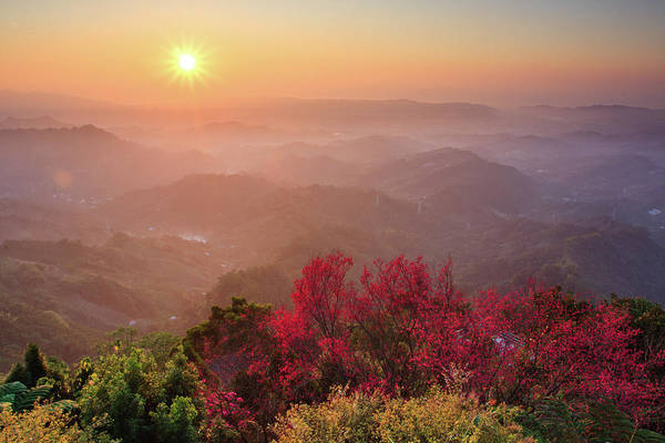 Horizontal Art Print featuring the photograph Sun Burst, Cherry Blossoms And Mountain Layers by Samyaoo