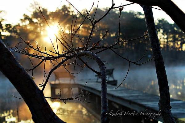 Art Print featuring the photograph Sunrise by Elizabeth Harllee
