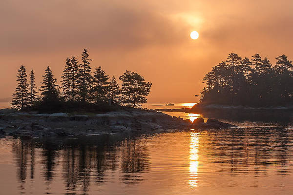 Blue Hill Sunrise Maine Lobster Boat Fog Art Print featuring the photograph Sunrise On The Coast by Don Seymour