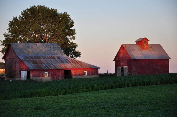 Farm Art Print featuring the photograph Sunset On The Farm by Gwen Allen