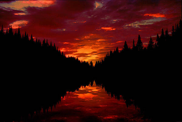 Silhouette Art Print featuring the photograph Sunset Over Wetlands by Roger Soule