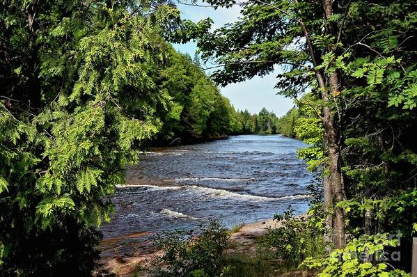Tahquamenon River Art Print featuring the photograph Tahquamenon River by Patti Smith